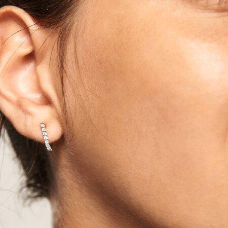 PDPAOLA Bird Silver Γυναικεία Ασημένια Σκουλαρίκια Με Πέτρες Ζιργκόν 925 AR02-089-U
